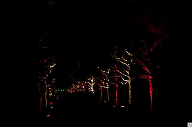 Mehr Bäume