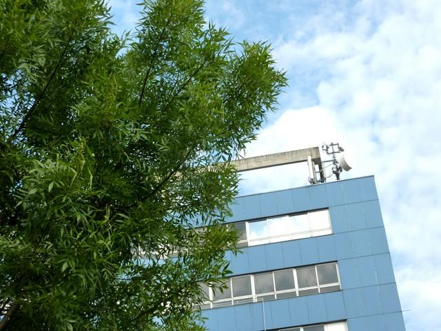Mit Baum
