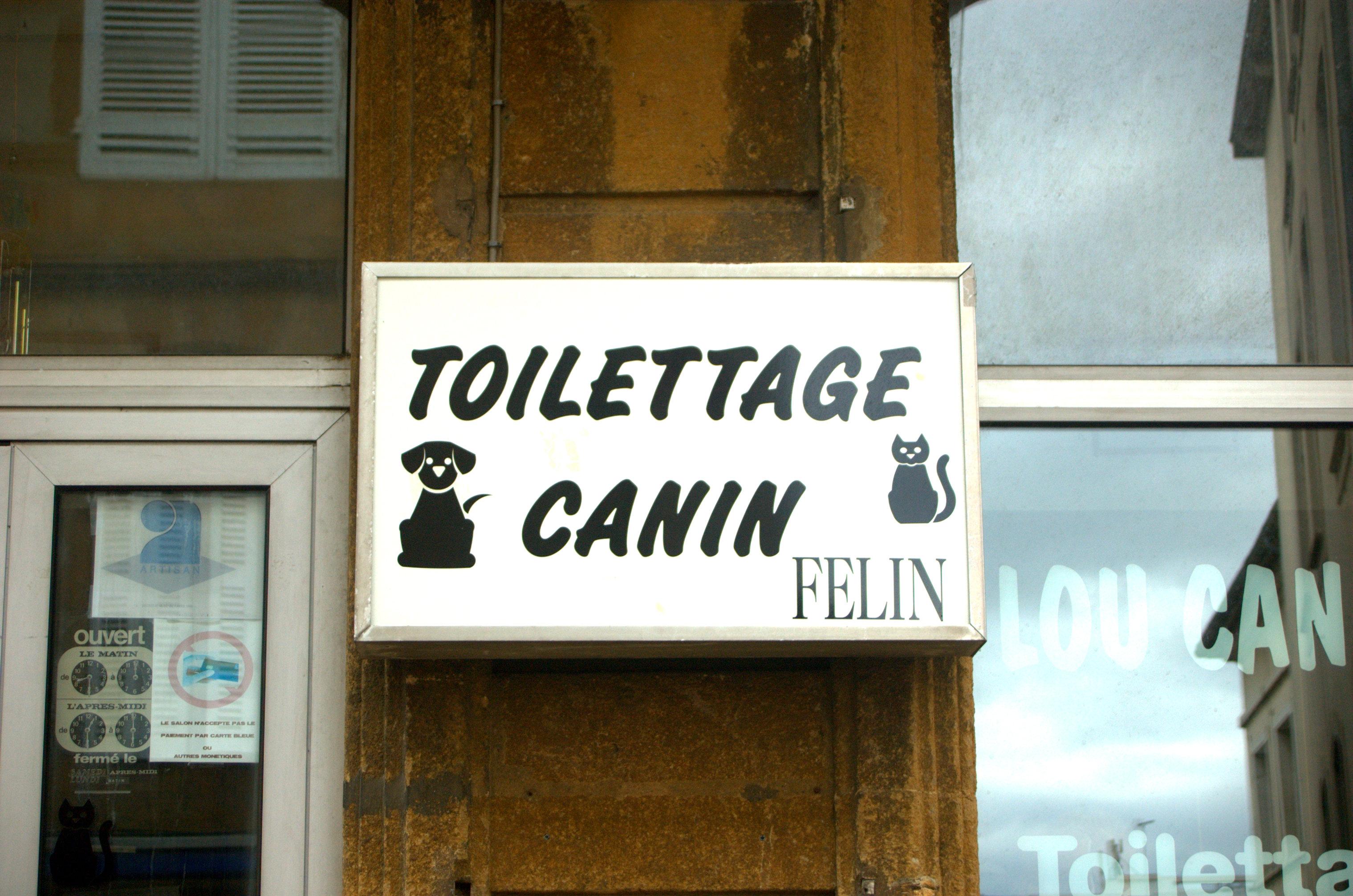 Toilettage Canin
